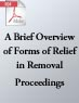 A Brief Overview of Forms of Relief in Removal Proceedings (.PDF)