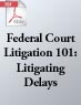 Federal Court Litigation 101: Litigating Delays (.PDF)
