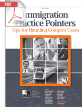 Immigration Practice Pointers, 2013–14 Ed. (eBook)